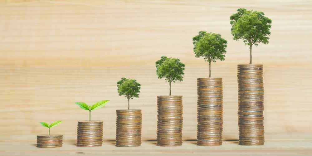What's Driving ESG Returns – A Look Under the Hood